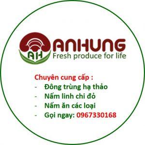 tdgroup-hinh anh An Hung -0967330168
